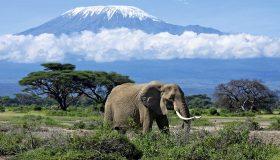 Les montagnes à gravir durant un circuit d'aventure en Afrique