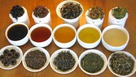 Top 4 des thés et leurs bienfaits sur votre santé