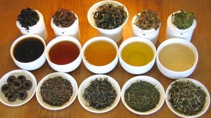 Thé vert - thé